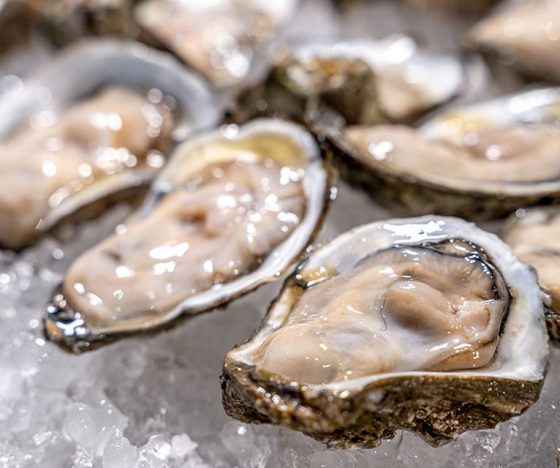 South Australian Oysters